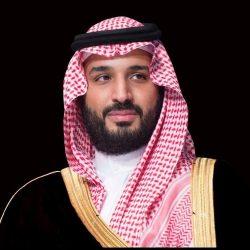 السعودية تطمئن «أوبك»: طرح أرامكو لن يؤثر على دور المملكة داخل المنظمة