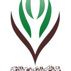 """جائزة """"شتاء السعودية"""" للتميز الإعلامي  تدفع المشاركين لإبراز تجارب الوجهات السياحية"""