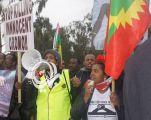 قتلى وفوضى فى إثيوبيا والجيش ينتشر بسبب احتجاجات على مقتل مغنى معارض