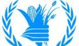 برنامج الأغذية العالمي: 9.8 ملايين شخص يعانون من الجوع الحاد في السودان